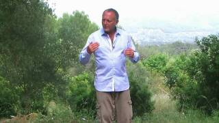 Learn the Benefits of Tai Chi From The Barefoot Doctor