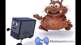 Как скачать, установить и настроить Malwarebytes Anti Malware