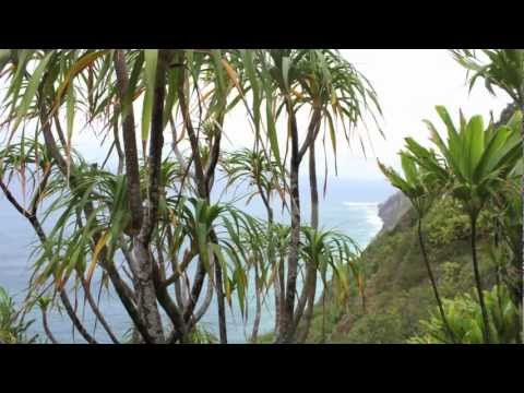 Kauai: Island of Discovery