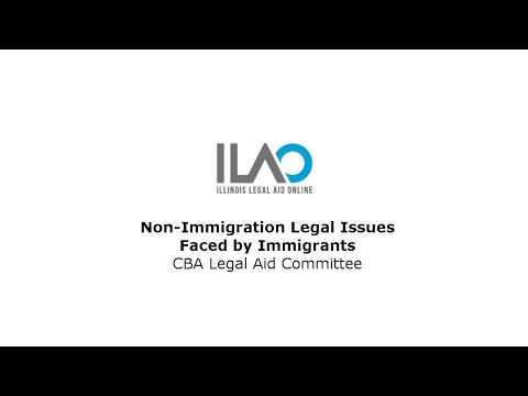 Non-Immigration Legal Issues Faced by Immigrants