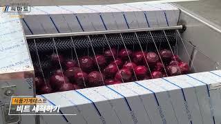 비트세척기 구근류세척기 농산물세척기 과일세척하는기계(B…