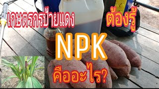 NPK. คืออะไร?