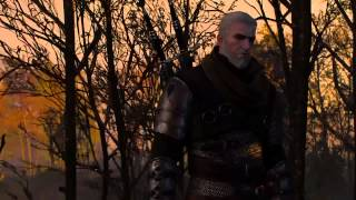 The Witcher 3 - Final
