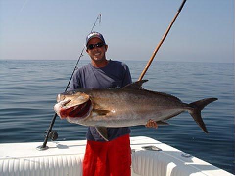 Amelia island fl deep sea fishing charters fernandina for Florida deep sea fishing
