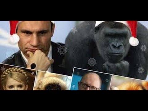 Скандалист Бриггс опрокинул Владимира Кличко в воду (видео