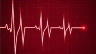 Gerçek Kalp Atış Sesi