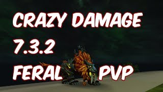 CRAZY DAMAGE - 7.3.2 Feral Druid PvP - WoW Legion