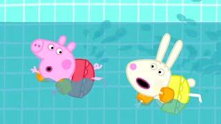 Peppa Pig en Español Episodios completos | ¡A Nadar! 💦Pepa la cerdita