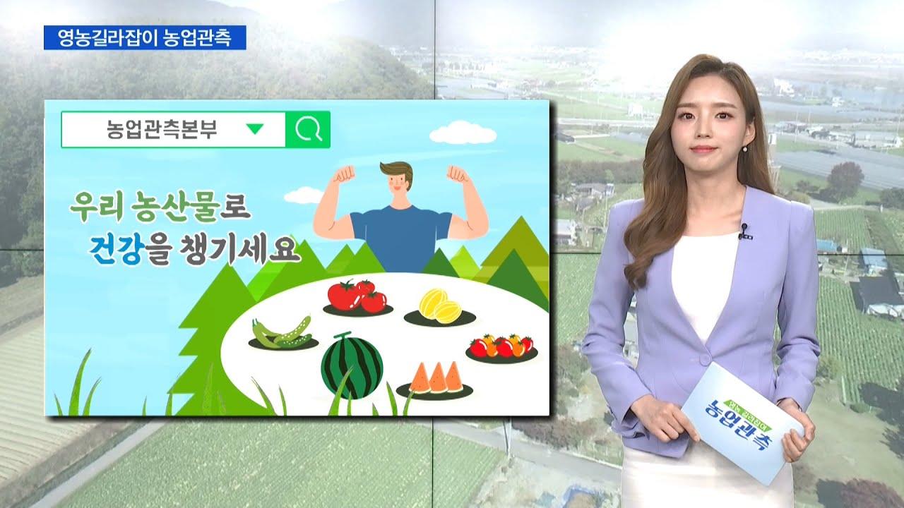 [농업관측] 7월 과채·과일