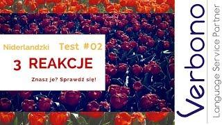 Niderlandzki od podstaw TEST #2: Jak to powiesz? 3 reakcje