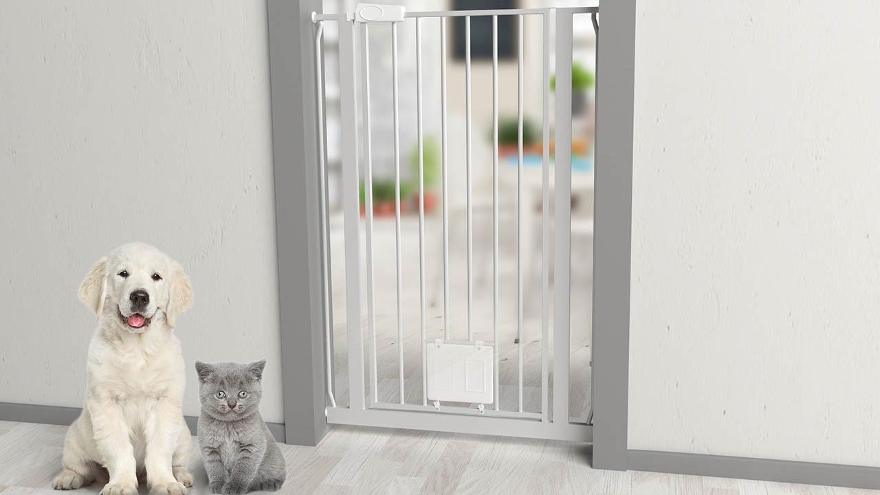 dog cat puerta de seguridad para perros y gatos youtube