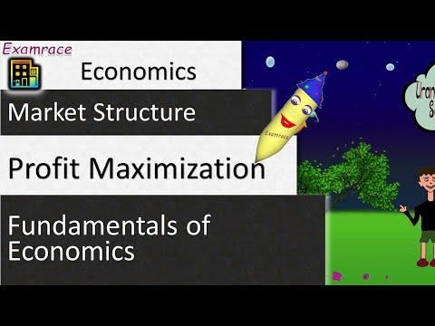Profit Maximization: Fundamentals of Economics