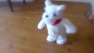 音楽を奏でて歩く白シュナの人形とシュナが初対面! ☆http://blog.goo.n...