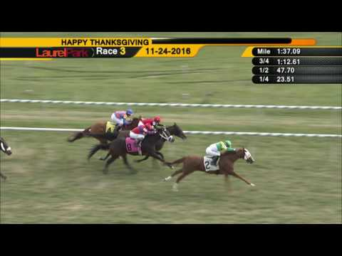 laurel park 11 24 16 replay show