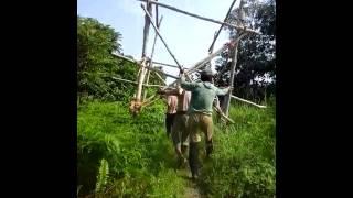 Download Video Perkosa di hutan MP3 3GP MP4