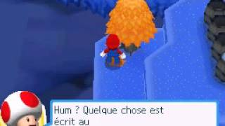Mario & Sonic aux Jeux Olympiques d'hiver DS / At The Olympic Winter Games - Anecdote 1 + Mission 9