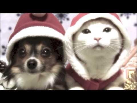 Jingle Bells(Chinese Version 2013)