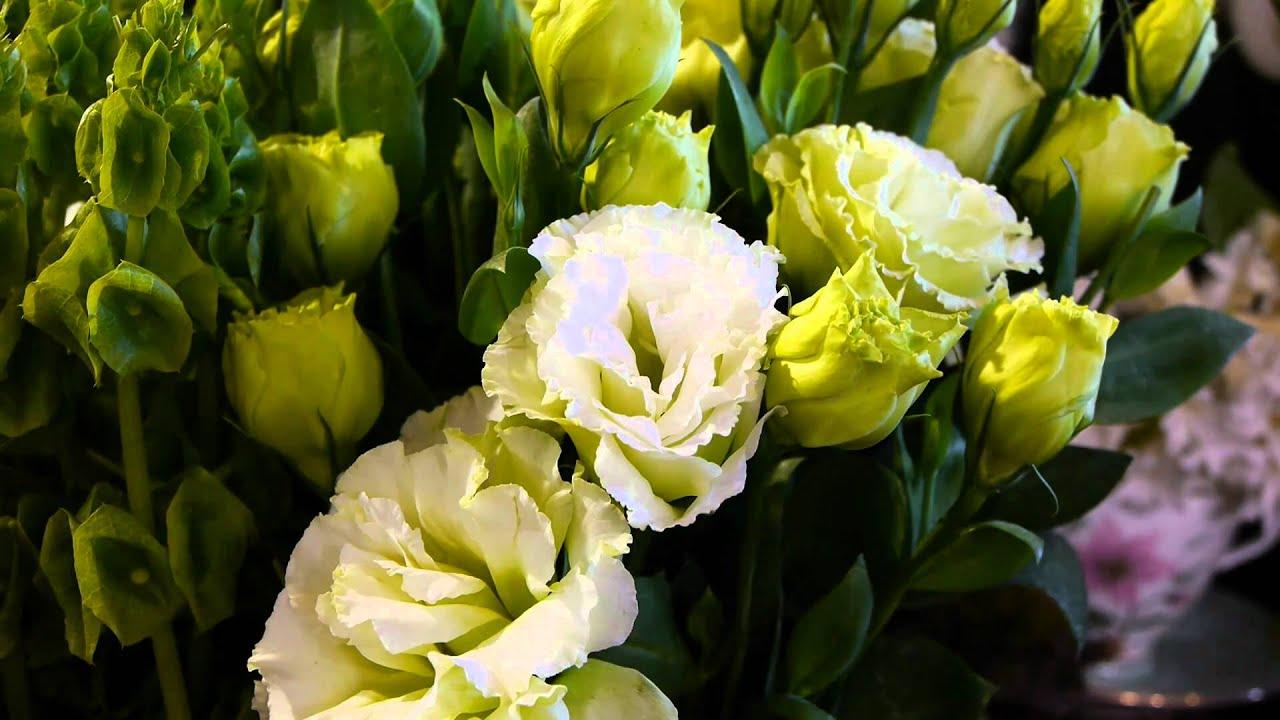melbourne international flower and garden show youtube