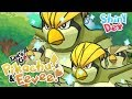 IM SO TIRED OF PIDGEYS! CLICK TO FIND OUT WHY!