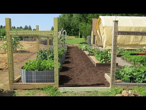 Raised Bed Area Expansion Fencing Amp Mulching Youtube