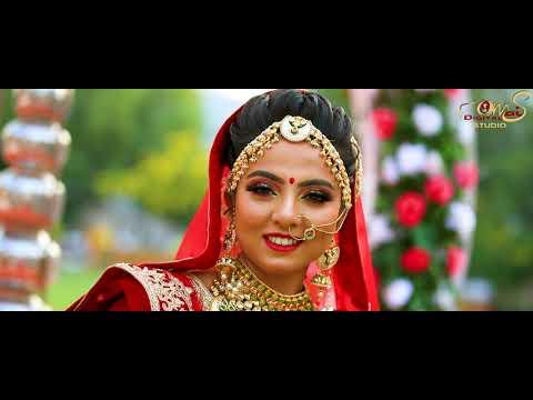 Shivani + Anuj Wedding Highlight Sort Film