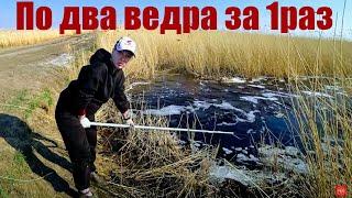 Рыбалка на паук 2021, по 50 карасей за 1 подъем ЁКЛМН. Рыбалка 2021. Рыбалка на карася