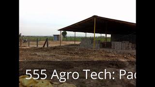Sheep Farm India - Lease \ Rent in Guntur,AP