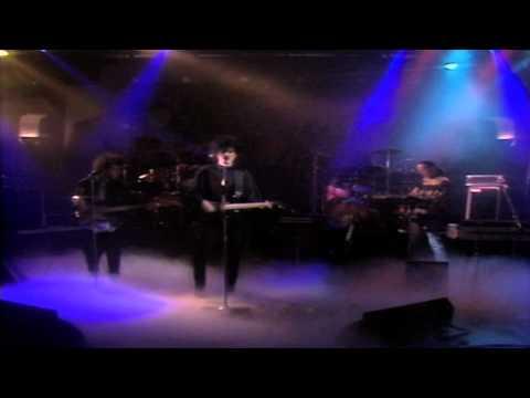 Caifanes - Perdí Mi Ojo de Venado [En Vivo 1988][Remasterizado] HD