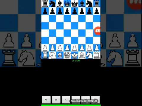 Contact Sales Limited - Product Information |Chess Fools Mate