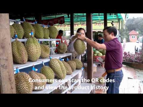 Durian traceability on blockchain