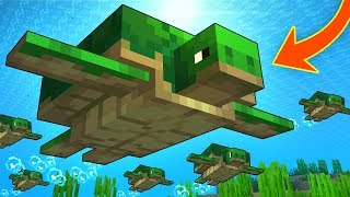Everything You Need To Know About TURTLES In Minecraft!
