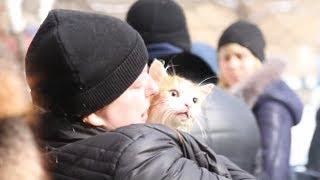 Спасатели возвратили к жизни кота, пострадавшего при пожаре