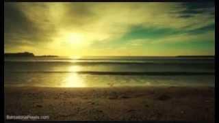 Jori Hulkkonen - Let Me Luv U (Muzique Tropique