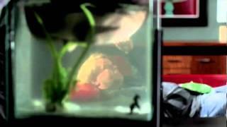 Dag Sesong 1 - Trailer
