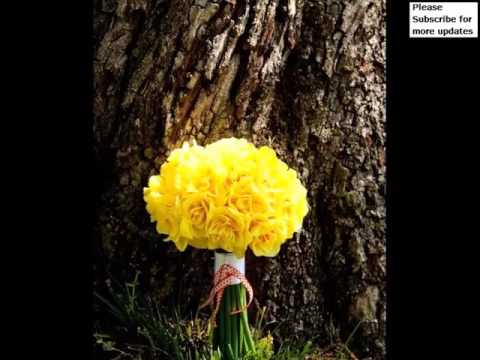 yellow-carnation-bouquet-|-collection-of-pictures-of-flowers