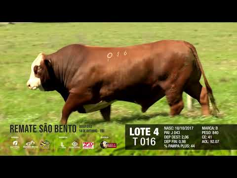 LOTE 04 T 016