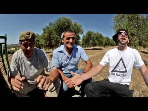Fibai e Tessi | Randagiu Sardu | nootempo NOOT006 - Official Single Sardegna