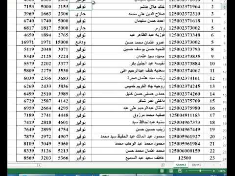 Pivot table in Excel 2010 - 2013  شرح عربي