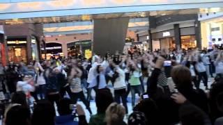 Танцевальный флэшмоб 24 марта в ТЦ Метрополис.mp4(Официальное видео с Танцевального флэшмоба 24 марта в ТЦ Метрополис., 2012-04-10T19:58:26.000Z)
