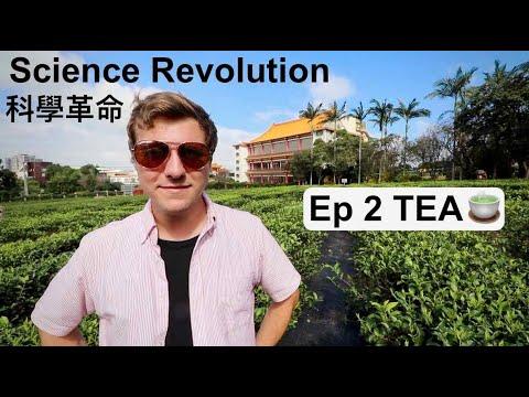 發酵中的臺灣製茶科學革命!SCIENCE REVOLUTION OF TAIWAN'S TEA INDUSTRY! 🍵