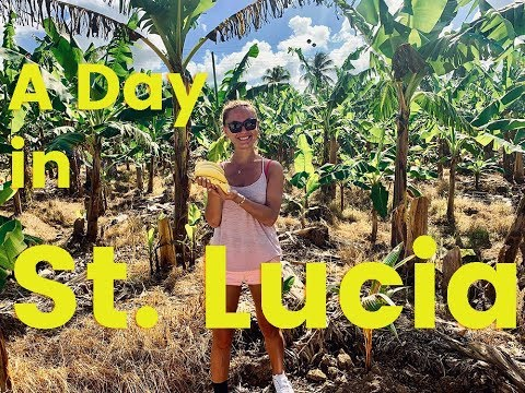 Things to Do in St. Lucia in One Day