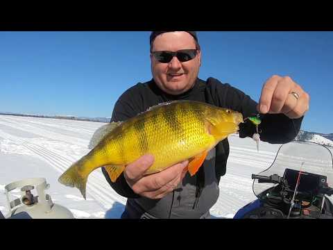 Cascade Lake Ice Fishing 2020, Lindy Darter Special