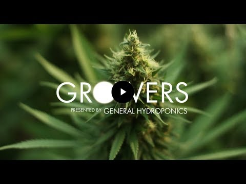 Growers: Series Intro