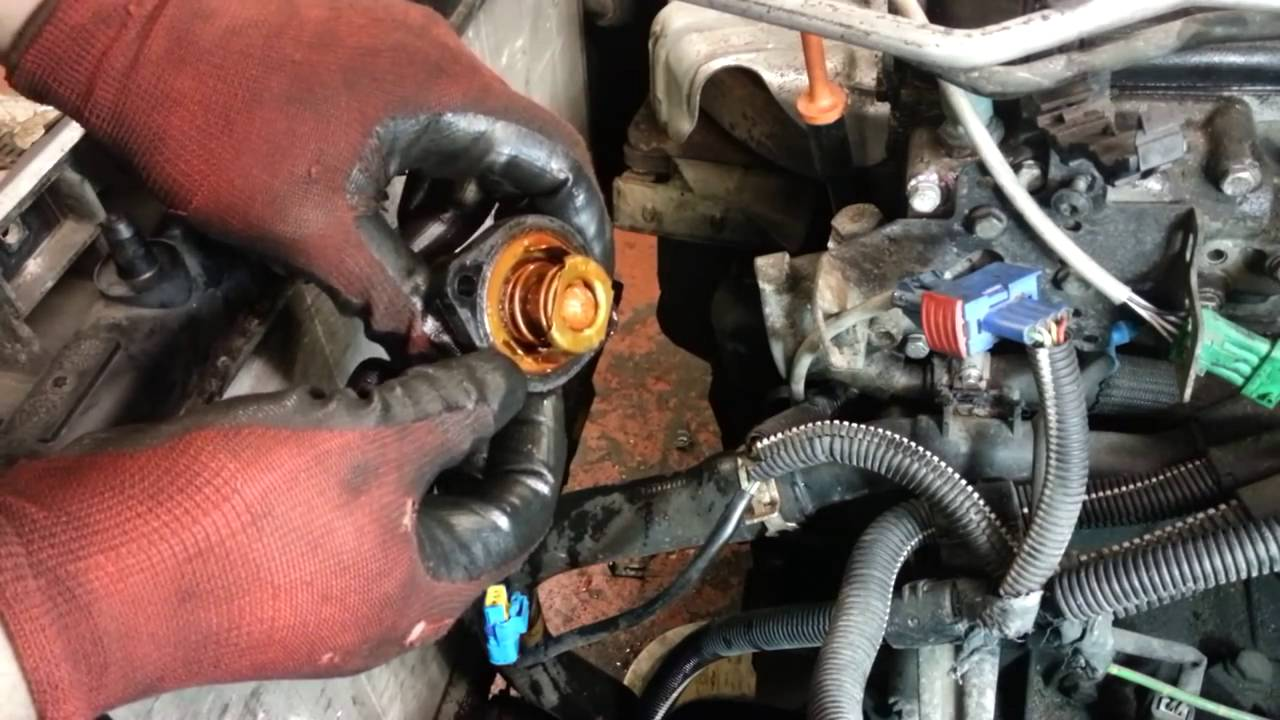 How To Change Replace Thermostat Peugeot 206 Amateur