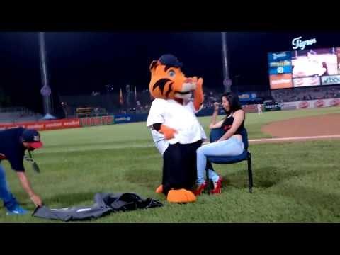 El striper mas sexy La Mascota de Los Tigres de Aragua con nuestra chica TuRumbaMaracay.com
