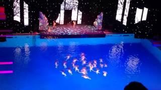 Шоу Олимпийских чемпионов по синхронному плаванию 24 декабря 2015