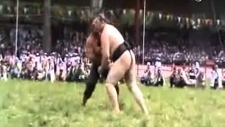 Sumo Güreşcisi ve Pehlivan Karşı Karşıya