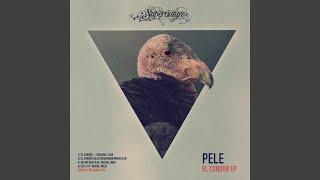 El Condor (Alex Niggemann Remix)