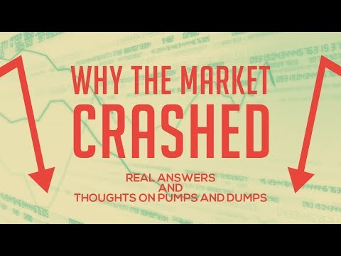 Cryptohopper Trading Bot Settings Update - Thoughts on Pump and Dumps - Why the Market Crashed