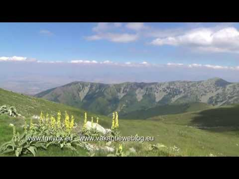 Macedonia: Pelister TV transmitter MPT - CHANNEL E4 VHF